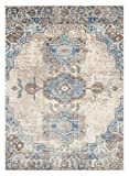 Cheap 7060 Distressed Ivory 5 x 7 Area Rug Carpet Large New