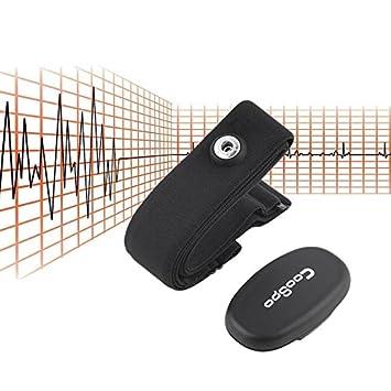 Dailyinshop Monitor inalámbrico del Ritmo Cardíaco de Bluetooth 4.0 ...