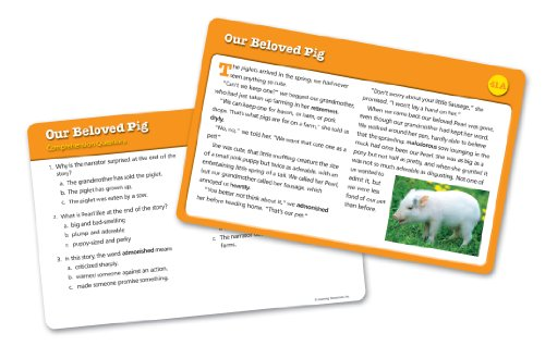 Learning Resources Reading Comprehension Card Set 4
