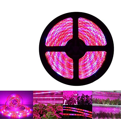 Plant Grow LED Light, OUEVA 16.4ft/5M 5050 SMD Waterproof Full Spectrum Red Blue 4:1 Growing Lamp for Aquarium Greenhouse Hydroponic Plant, Garden Flowers Veg Grow Light