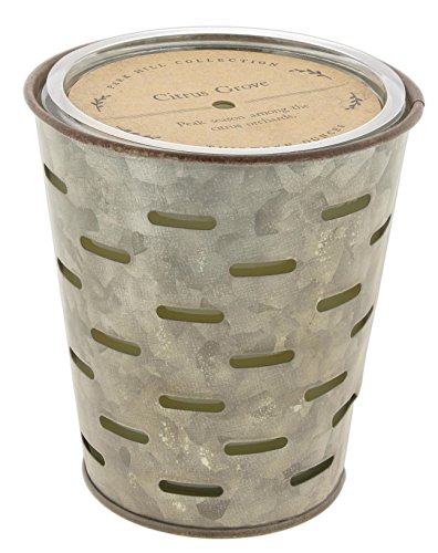 (Park Hill Scented Candle ('Citrus Grove') )