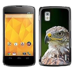 Cubierta protectora del caso de Shell Plástico    LG Google Nexus 4 E960    Bird Feathers Green Summer @XPTECH