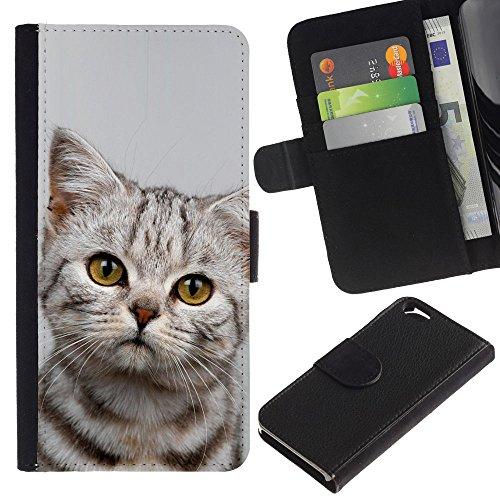 EuroCase - Apple Iphone 6 4.7 - kitten sad Manx azules shorthair - Cuir PU Coverture Shell Armure Coque Coq Cas Etui Housse Case Cover