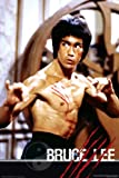 NMR 24754 Bruce Lee Fight Decorative Poster