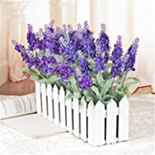 High quality 100pcs/bag Imported Provence Short String Lavender Seeds Lavandula angustifolia Flower Seeds Potted Plants for Home