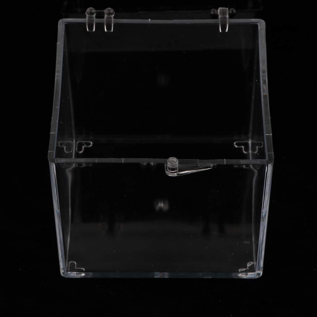 Caja Presentación De Perfeclan Vítrina Estuche Exhibición cAR3j45qL