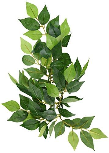 Hagen Reptile Terrarium - Exo Terra Silk Terrarium Plant, Small, Ficus