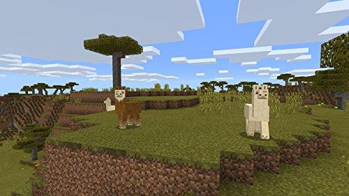 Minecraft - Nintendo Switch 7