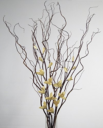 Tall Curly Willow (GreenFloralCrafts DIY Curly Willow with WHITE Sword Lilies - Vase NOT Included)