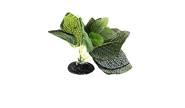 Amazon.com : eDealMax acuario pecera paisaje Plant Simulation Hierba alta decoración 14cm : Pet Supplies