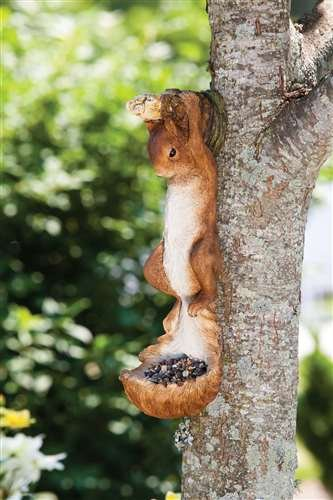 Evergreen Enterprises EG2BF447 Hanging Squirrel Feeder B00GGXH490