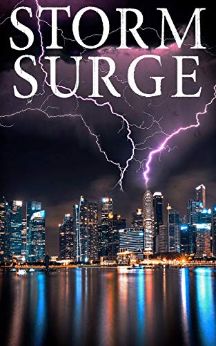 Storm Surge: EMP Survival in a Powerless World by [Donovan, J.S]