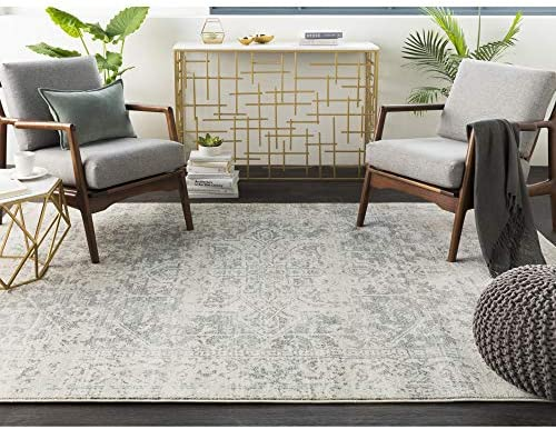 Janine Gray and Beige Updated Traditional Area Rug 10 x 14