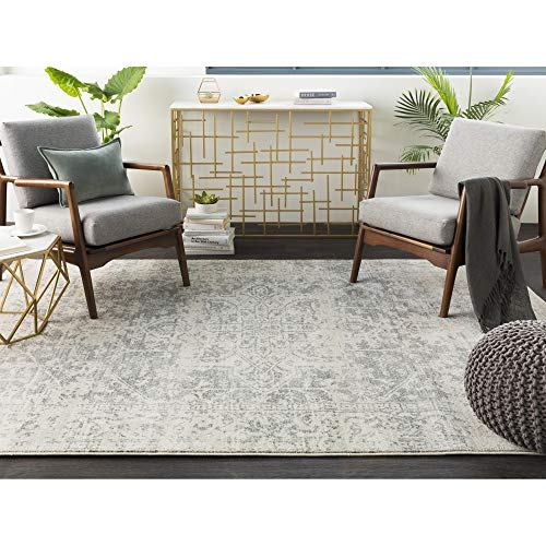 Janine Gray and Beige Updated Traditional Area Rug 6'7″ x 9′