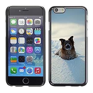 """Exotic-Star Fundas Cover Cubre Hard Case Cover para 4.7"""" iPhone 6 ( Perro divertido del invierno en nieve )"""