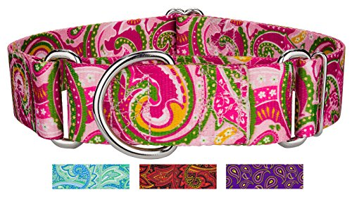 Country Brook Design 1 1/2 Inch Pink Paisley Martingale Dog Collar - Medium by Country Brook Design