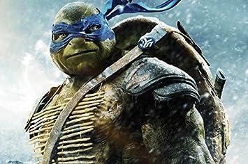 Amazon.com: Acción Azul con los ojos vendados Leonardo ...