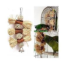 OKDEALS Pet Parrot Conure Cockatiel Parakeet Budgie Bird Chew Bites Swing Cages Toys