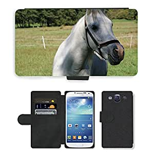 Super Stella Cell Phone Card Slot PU Leather Wallet Case // M00107961 Horse Horse Head Graze Animal World // Samsung Galaxy S3 S III SIII i9300