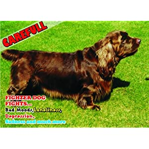 Attention - Beware / Fun Sign Dog Sussex Spaniel Dog for your home or house SF2185 27