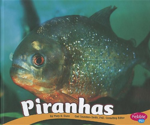Piranhas (South American Animals)