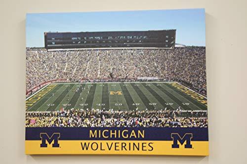 Michigan Wolverines NCAA H/A Stadium 16x20 Artissimo Canvas Art