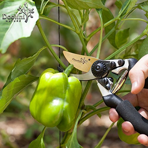 Doolini Nature Professional Pruning Shears - Bypass Garden shears,Drop Forged Hand Pruners Ergonomic Comfort Grip & Safety Lock by Doolini Nature (Image #6)