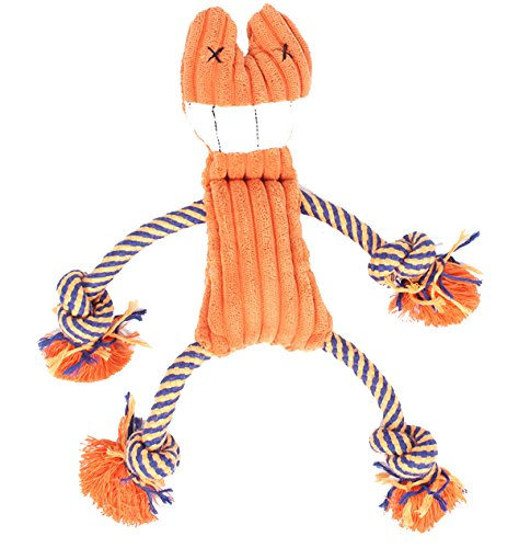Pety Pet Dog Toys Puppy, Small Dogs and Medium Dogs, Squeaky Toy, Plush Toys, Rope Pet Toys, Dog Chew Toys (Orange ()