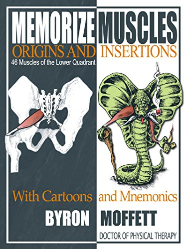 Memorize Muscles, Origins, and Insertions with Cartoons and Mnemonics: 46 Muscles of the Lower Quadrant (Origin And Insertion Flash Cards)