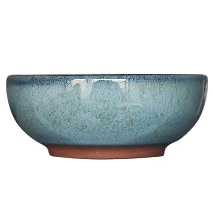 Amazon.com: Star258 - Cuencos de porcelana para servir ...