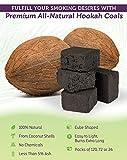 eCoal Natural Premium Coconut Hookah Sisha Charcoal