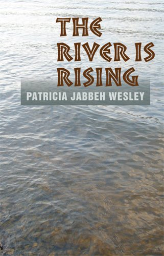 The River Is Rising (The City Is A Rising Tide)