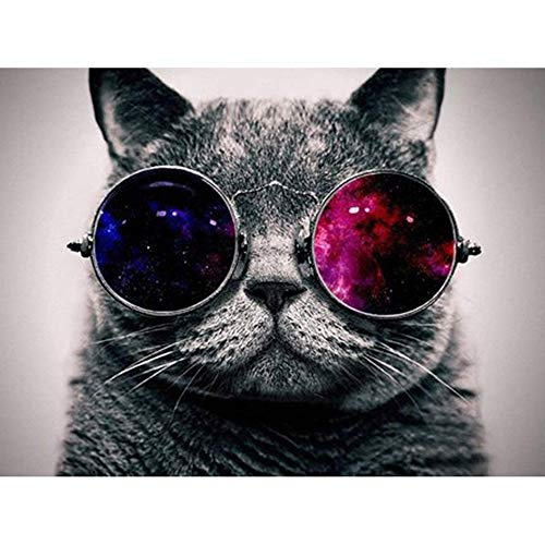 - DIY 5D Diamond Painting by Number Kits, Crystal Rhinestone Diamond Embroidery Paintings Pictures Arts Craft for Home Wall Decor,Fat Cat with Glasses,15.7 X 11.8in