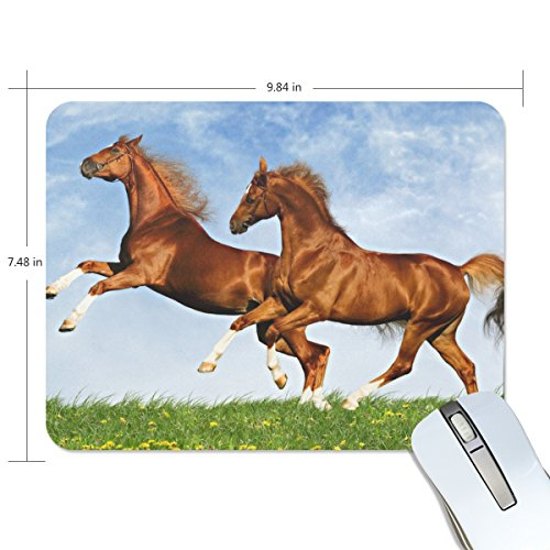 ALIREA Two Horses Frolic On The Plain Mouse Pads Non-Slip Rubber Backing Gaming Mouse Pad (Frolic Horse)
