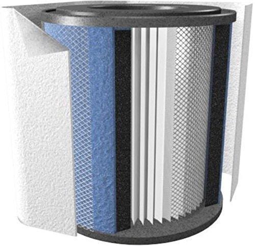 Austin Air HM HealthMate 400 Replacement Filter for Air Purifier-White-FR400B FR400B White