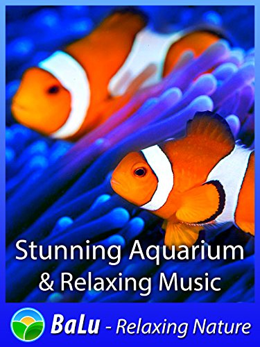 Stunning Aquarium & Relaxing Music - BaLu - Relaxing Nature