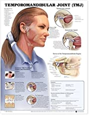 A Natural Solution For Tmj Pain Breaking Muscle