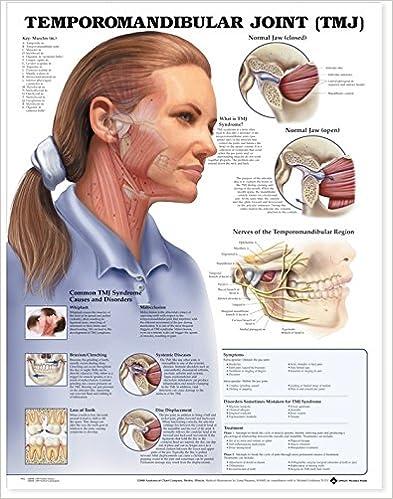 Temporomandibular Joint Tmj Anatomical Chart 9781587792953