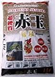 RYUUSEN (DRAGON SPRING) HEAT TREATED SUPER HARD ACADAMA (MEDIUM LARGE)