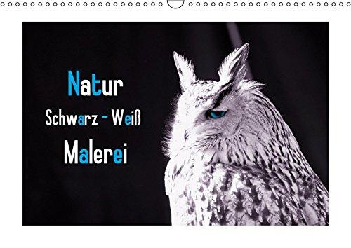 Natur Schwarz Weiß Malerei Wandkalender 2019 Din A3 Quer Die