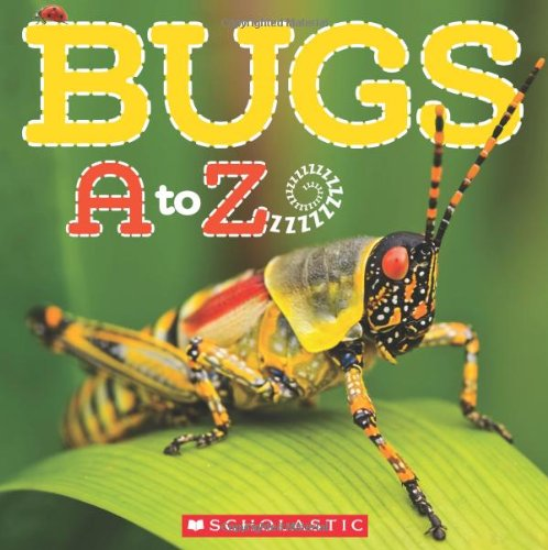 Bugs A To Z make fun camping activities kids love and adults will too to keep from being bored and fun campfire games are just the start of tons of fun camping ideas for kids!