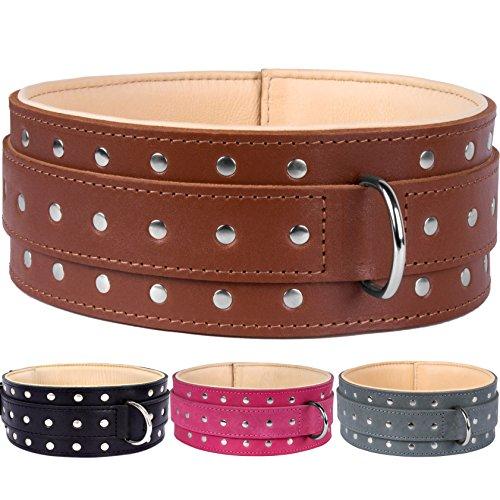 CollarDirect Extra Large Dog Collar, Genuine Leather Dog Collar, 3
