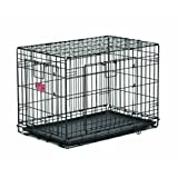 Midwest Home For Pets Life Stages Ace Double Door Dog Crate, 24-Inch