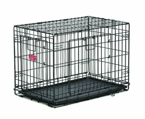 Large Midwest Life Stages - MidWest Homes for Pets Life Stages ACE Double Door Dog Crate, 24-Inch