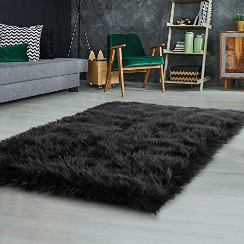 Ophanie Ultra-Luxurious Fluffy Rectangle Area Rug