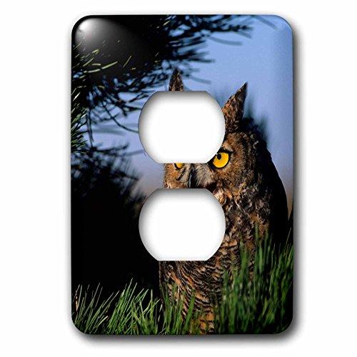 Hooting Owl Clock - 7