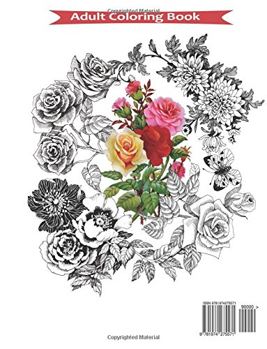 adult coloring book coloring book for adults relaxation butterflies and flowers stress relieving and gorgeous illustrations to color