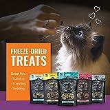 Vital Essentials Vital Cat Freeze-Dried Turkey Mini