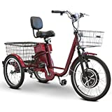 EW-29 Electric Trike Adult Tricycle E-Wheels 500 Watt Pedaling