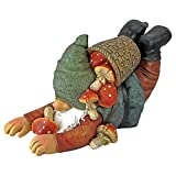 Design Toscano Garden Gnome Statue – Clumsy Karl the Mushroom Hunter Garden Gnome – Lawn Gnome Review